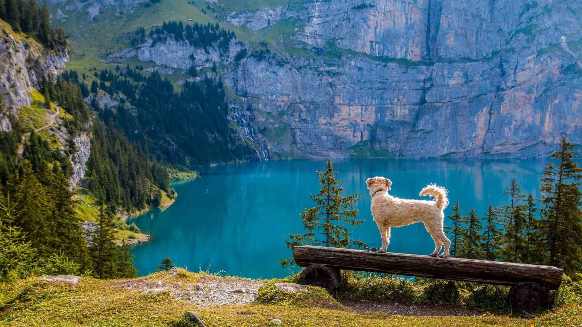 Bergsee Lake, Switzerland