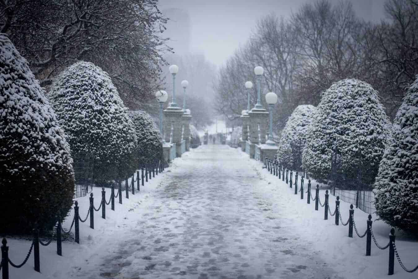 Boston During Winter - Public Garden, Boston, USA