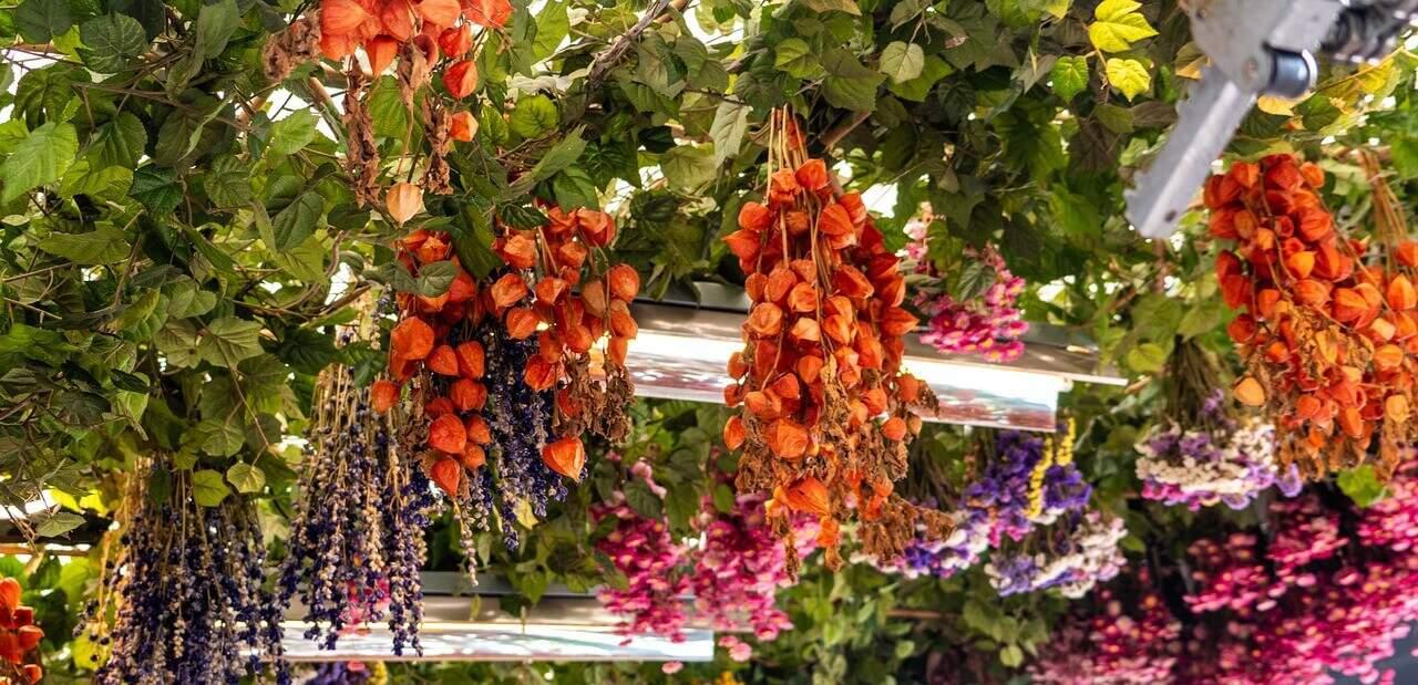 Flower-market-Amsterdam-Netherlands