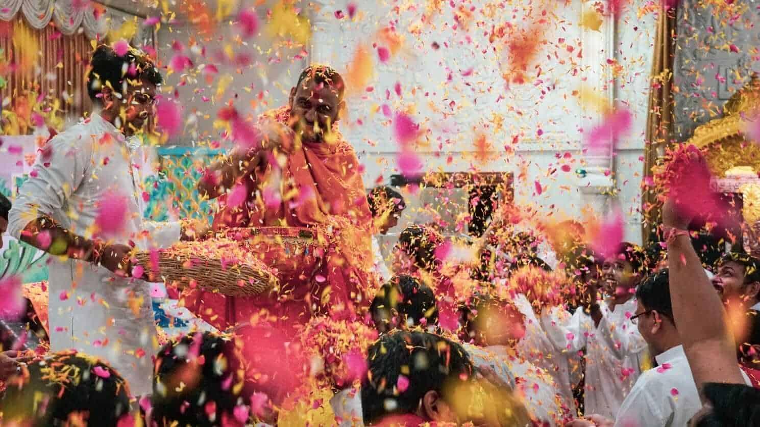 Flowers confetti on Holi