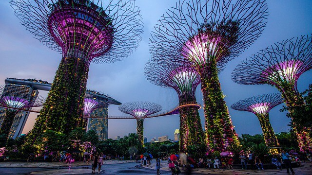 Gardens by the Bay with the OCBC Skywalk in Singapore