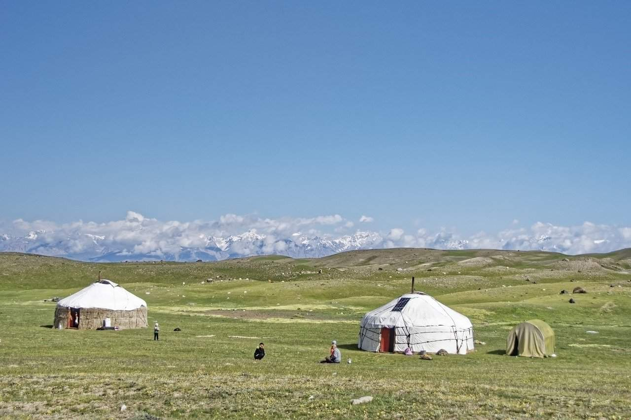 Ger in the meadows, Mongolia