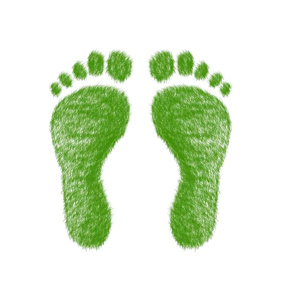 Green-carbon-footprint