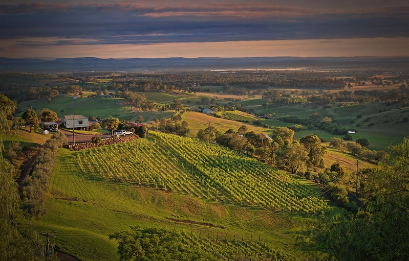 Hunter Valley Winery, Sydney, Australia