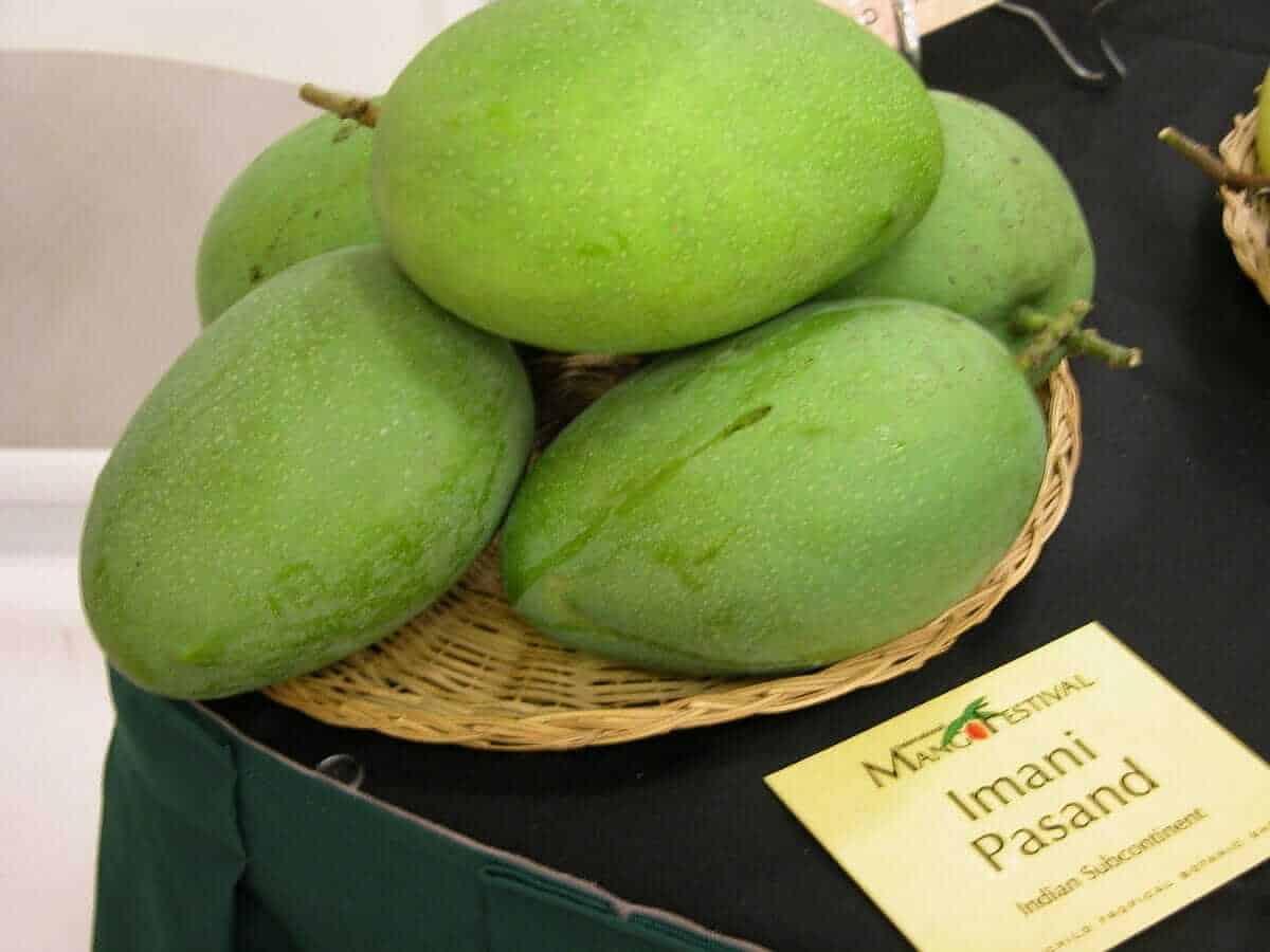 Imaampasand Mango