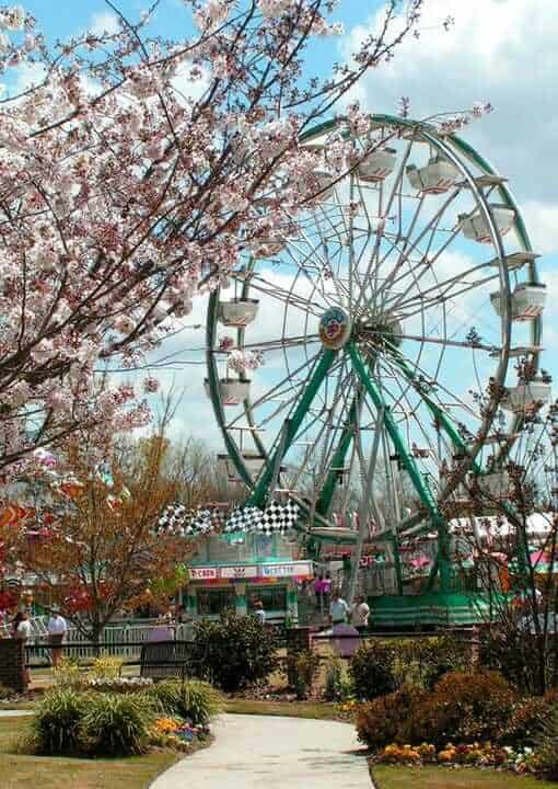 International Cherry Blossom Festival, Macon, GA