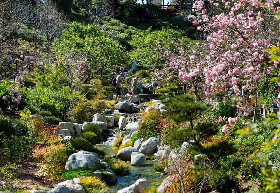 Japanese Friendship Garden, San Diego