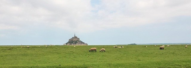 Mont Saint Michel from the meadows