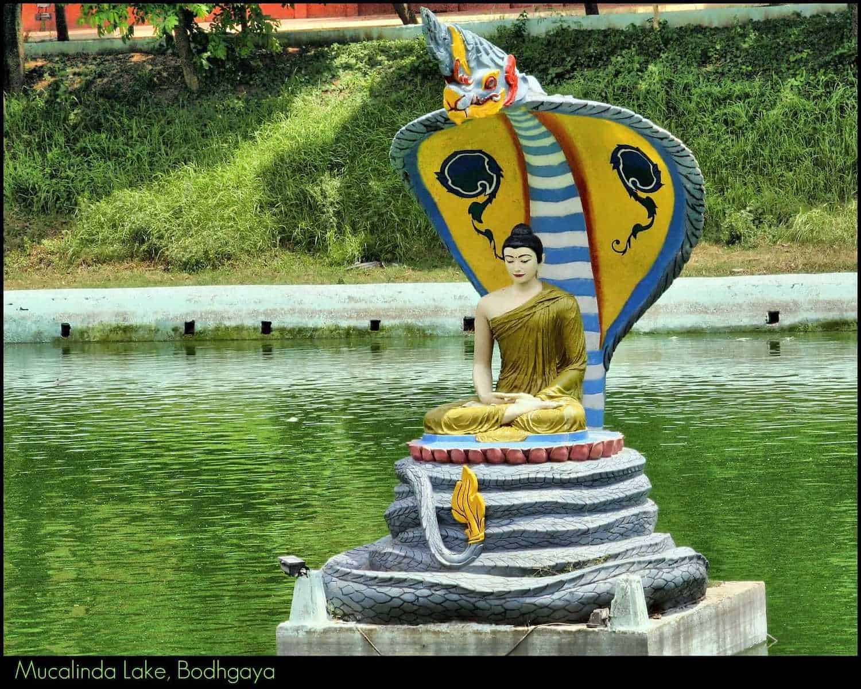 Mucalinda Lake, Bodh Gaya, Bihar, India