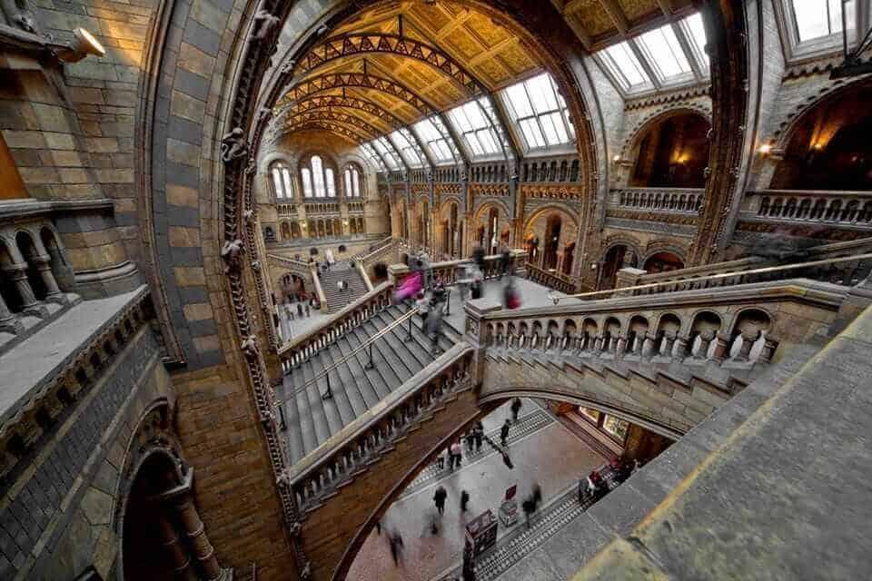 National History Musuem London