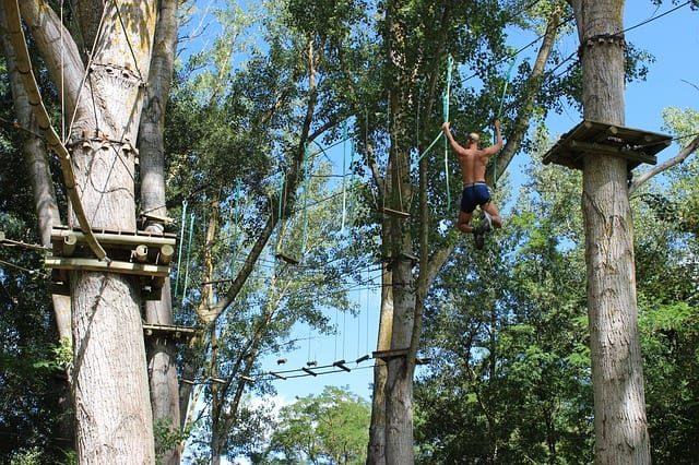 Obstacle Course At Adrenalin Forest, Christchurch, New Zealand