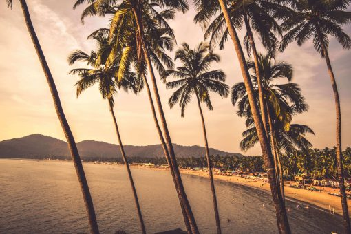 Places To Visit in Goa – Your Total Travel Guide To India's Party Capital!