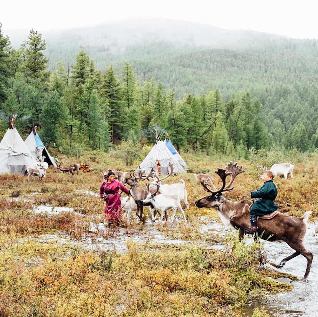 Reindeer Tribe of Mongolia