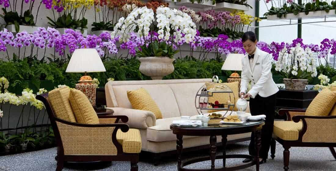 The Orchid Conservatory at Hotel Majestic
