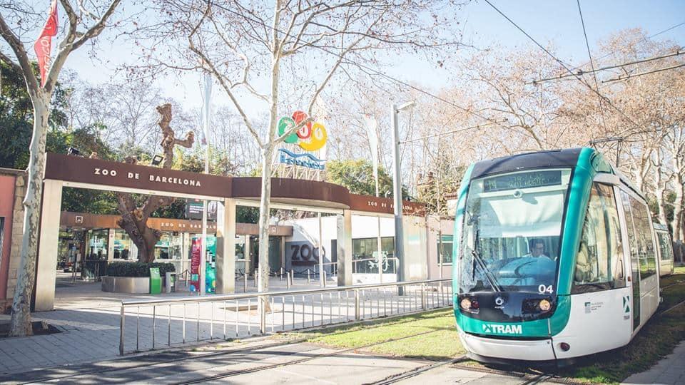 Barcelona-Zoo-Barcelona-spain
