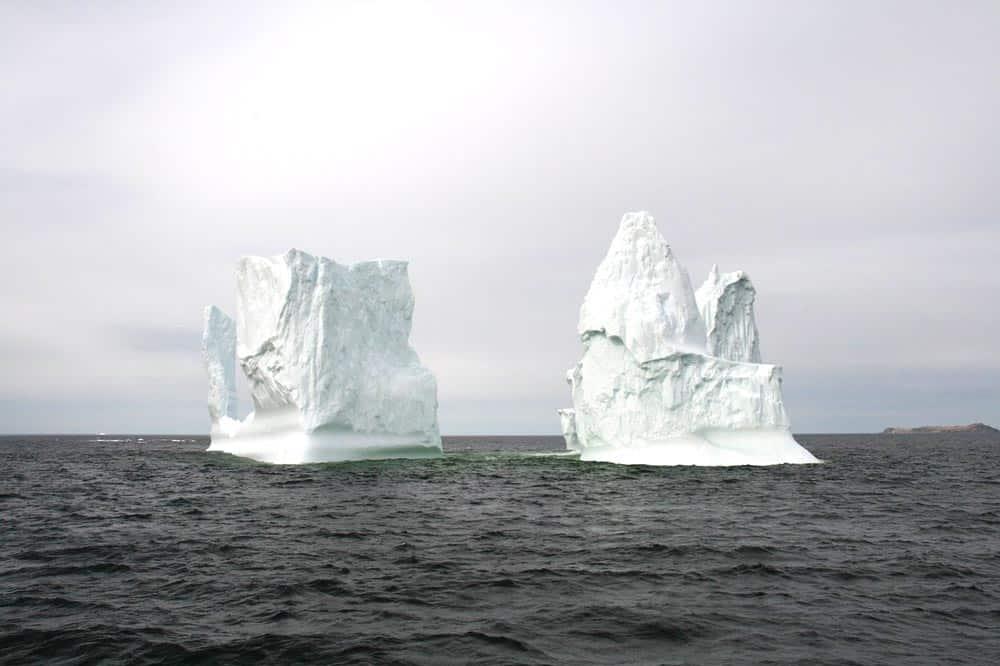 icebergs in newfoundland canada