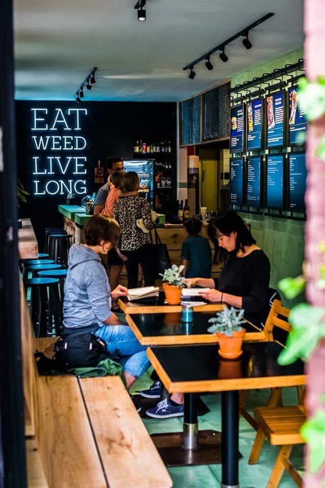 dutch weed burger joint amsterdam